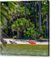 Palmetto Forest On Hunting Island Beach Acrylic Print