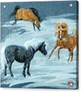 #9 - Ponies In Snow Acrylic Print