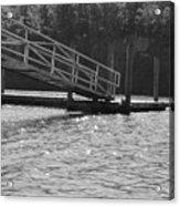 Savannah River  Acrylic Print