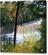 Tahquamenon Falls Acrylic Print