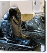 The Egyptian Museum Of Antiquities - Cairo Egypt Acrylic Print