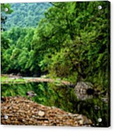 Williams River Summer Acrylic Print