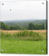 #940 D1095 Farmer Browns West Newbury Acrylic Print