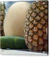 9720 Acrylic Print