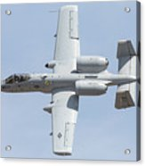 A-10 Thunderbolt II Acrylic Print