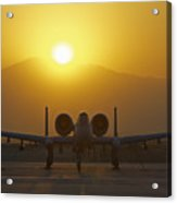 A-10 Warthog Acrylic Print