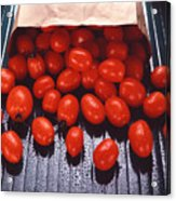 A Bag Of Tomatoes Acrylic Print