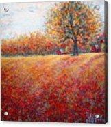 A Beautiful Autumn Day Acrylic Print