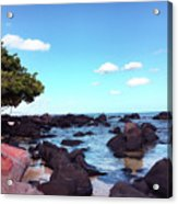 A Beautiful View Of The Sea From Mauritius Acrylic Print