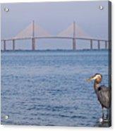 A Bird And A Bridge Acrylic Print