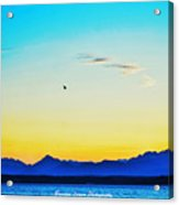 A Bird In The Sky At Sunset Acrylic Print