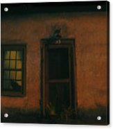 A Black Cat's Night Acrylic Print by David Lee Thompson