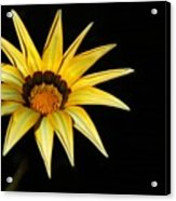 A Bright Yellow Star Acrylic Print