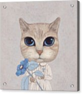 A Cat With A Blue Flower Acrylic Print