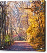 A Change Of Seasons On Forbidden Drive Acrylic Print