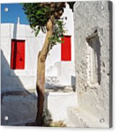 A Church And A Tree Acrylic Print