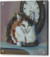 A Clockwork Cat Acrylic Print