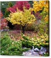A Colorful Fall Corner Acrylic Print