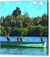 A Cormorant Cruise 2 Acrylic Print