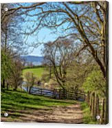 A Country Pathway In Northern England Acrylic Print