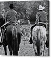 A Cowboys Life Acrylic Print