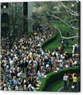 A Crowd Gathers Around Keenelands Acrylic Print by Melissa Farlow