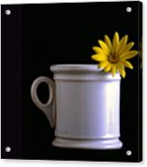 A Cup Of Flower Acrylic Print