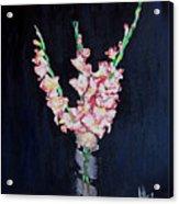 A Cutting Of Gladiolas Acrylic Print