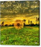 A Dandy Sunset Acrylic Print
