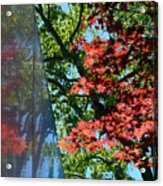 A Day Of Reflection Acrylic Print