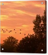 A Different Approach To Sunset Acrylic Print