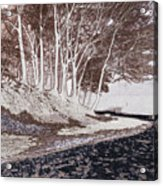 A Different World #1. Groove Of Trees Acrylic Print