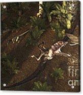 A Dimorphodon Pterosaur Chasing An Acrylic Print