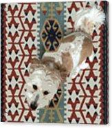 A Dog In On A Rug Acrylic Print