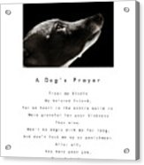 A Dog's Prayer In White  A Popular Inspirational Portrait And Poem Featuring An Italian Greyhound Acrylic Print