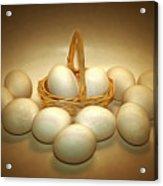 A Dozen Eggs II Acrylic Print