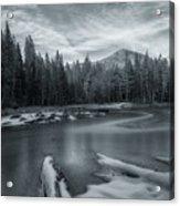 A Dry Winter 1 Acrylic Print
