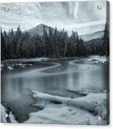 A Dry Winter 2 Acrylic Print
