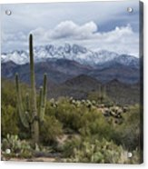 A Dusting Of Snow In The Sonoran Desert  Acrylic Print