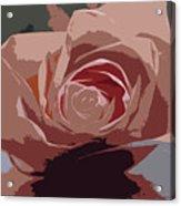 A Dusty Rose-d Acrylic Print