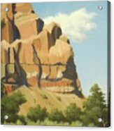 A Face In New Mexico Acrylic Print