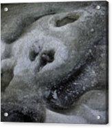 A Face Of Winter Acrylic Print
