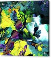 A Fairy Wonderland Acrylic Print