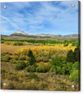A Fall Day In The Sierras Acrylic Print