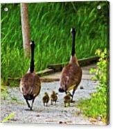 A Family Stroll Acrylic Print