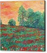 Field Of Beauty Acrylic Print