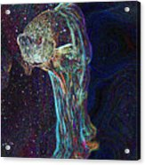 A Fish Called Poe Acrylic Print