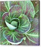 A Floral I Acrylic Print