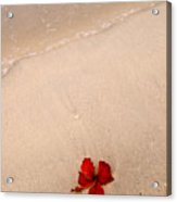 A Flower And The Sea Acrylic Print