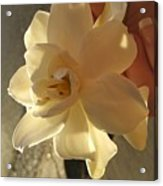 A Flower In Hand Beats.... Acrylic Print